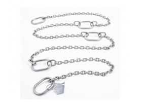 1000Kg 4 metre Stainless Steel Pump Lifting Chain